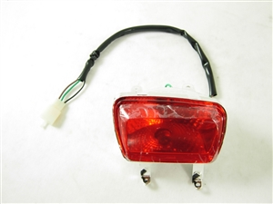 tail light assembly (left side) 10128-a8-2