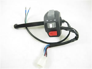 kill switch/electric start switch 10688-a39-4