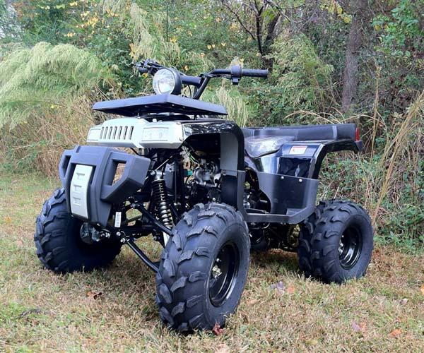 ata 125e taotao kids 125cc utility atv 2001 Tao Tao 250 ATV mid size atv 125cc e