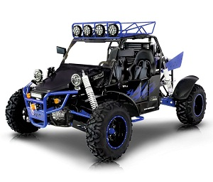 BMS V-TWIN BUGGY 800 PLATINUM 2SEATER