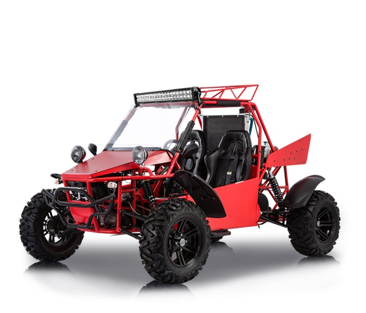 BMS-V-TWIN-BUGGY-800-L4