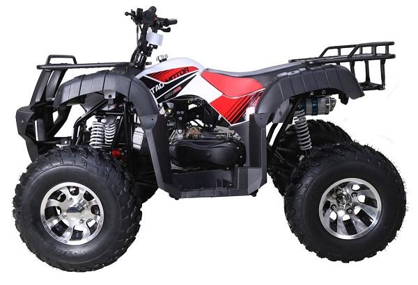 TAOTAO BULL-200 ATV