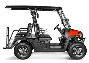 Vitacci Rover-200 EFI 169cc (Golf Cart) UTV, 4-stroke, Single-cylinder, Oil-cooled