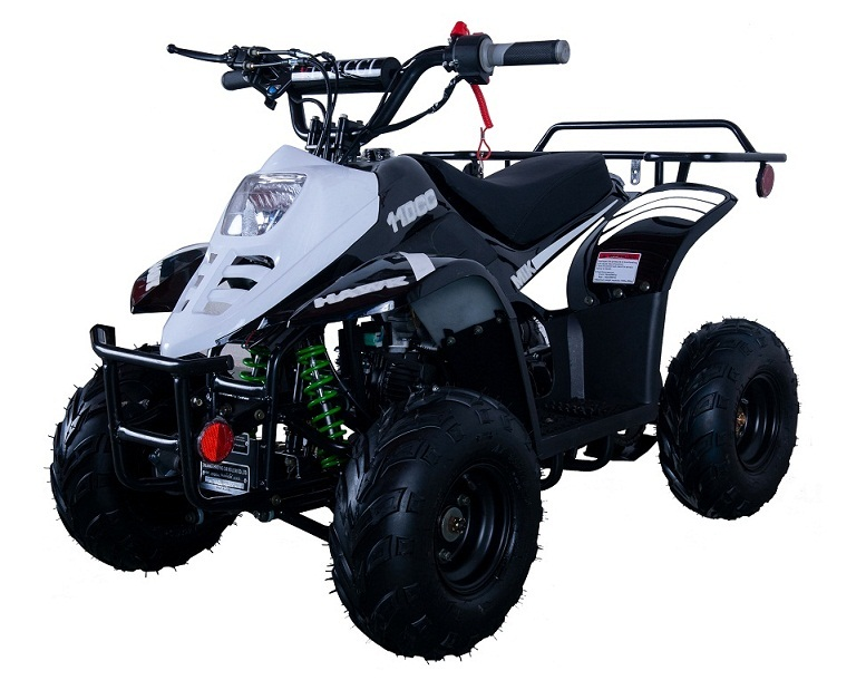 Vitacci HAWK 6 110cc ATV For Sale at TXPowersports com