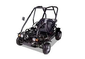 Vitacci RAPTOR 110cc 49FM5 Go Kart