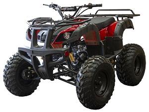 Vitacci UT-125 (125cc) ATV