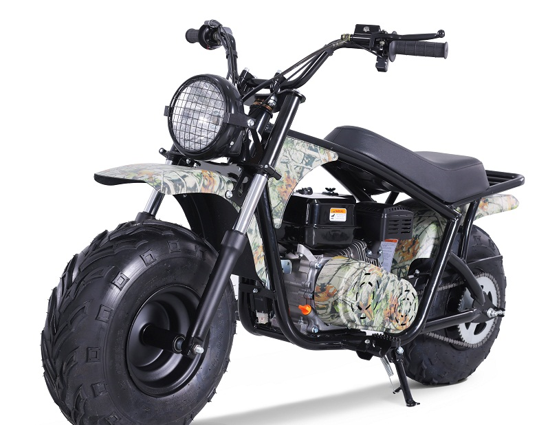 TaoTao DB200 Dirt Bike
