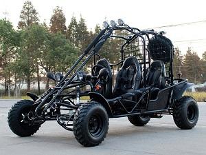 Dongfang 200 ( DF200GKE )Go Kart Type E