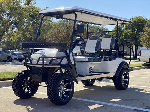DYNAMIC ENFORCER FULLY LOADED LIMO LSV GOLF CART WHITE