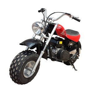 Ricky Power Sports Falcone mini bike 200cc