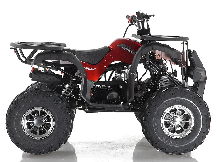 Apollo Focus-10 DLX 125 cc ATV