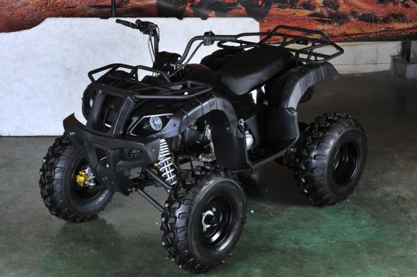 KANDI MDL-150AUG-1 ATV