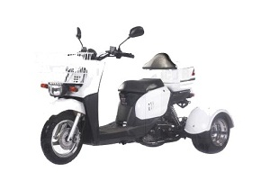 ICEBEAR MINI CRUZZER (PST50-9) 49.5cc, Air Cooled, Automatic, Front Drum Brake, Rear Disc Brake