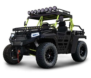 new bms the beast 1000 2s - 4x4 utv, 81 hp, v-twin 996cc efi