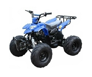 ICE BEAR ''Big Raptor'' 125cc ATV Automatic with Reverse, Remote Kill, Foot gear shifter, 19'' Tires (PAH125-3E)