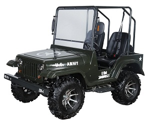 NEW THUNDERBIRD JEEP (PAZ200-1) 200CC GO CART, UTV GOLF CART