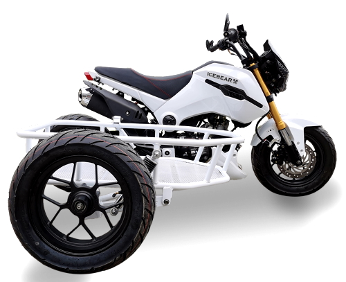 Ice Bear Fuerza (PMZ125-1S) Motorcycle