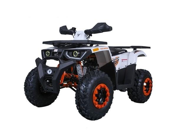 TAOTAO RAPTOR 125CC ATV