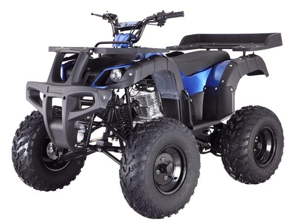 TAOTAO RHINO 250CC ATV