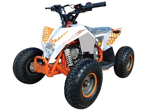RPS 110CC ATV Automatic Fully Assembled