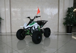 RPS High End RPS JET 8 (EGL MOTOR) 125cc ATV
