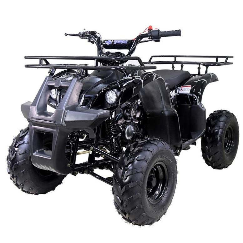 ATV ENGINE F-N-R 107cc Taomotor ATV ATA 125 D Go Kart JEEP AUTO ENGINE F-N-R
