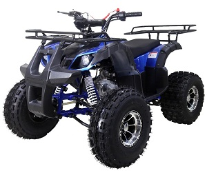 TaoTao 125CC NEW TFORCE ASSEMBLED Mid Size ATV, Automatic with Reverse, Air Cooled, 4-Stroke, 1-Cylinder