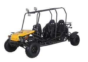 TaoTao 4FUN200 176cc, Air Cooled, 4-Stroke, 1-Cylinder, Fully Automatic with Reverse, Chain Drive