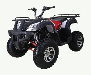 TaoTao New BULL 200 169CC, Air Cooled, 4-Stroke, 1-Cylinder, Automatic