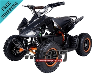 TAOTAO E1-350 Electric ATV, 350 Watt , Brushless Electric Motor