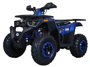 TaoTao Raptor 200 Utility ATV, Air Cooled, 4-Stroke, 1-Cylinder, Automatic