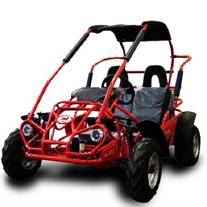 Trail Master 200cc Gokart Type MID XRX