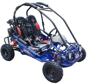 Trail Master Gokart Type MINI XRX-R  (California Legal)