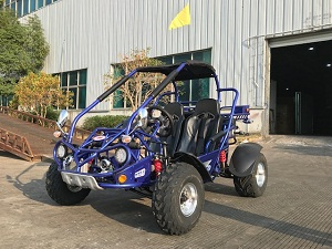 Buy Trail master 300XRX-E EFI Go Kart, Fully Automatic With Reverse Engine, Liquid Cool Efi (Fuel Injection) sale at online - Txpowersports.com