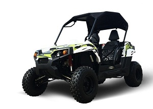 utv 150cc for adults too!