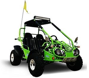 Trail Master Full size go kart 200cc Sale Online