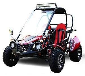 TrailMaster Blazer 200X Go kart