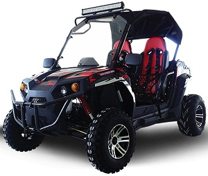 Trailmaster 300cc Utility Vehicle UTV