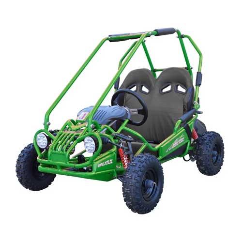 TrailMaster Mini XRX GoKart
