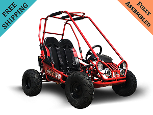 TrailMaster Mini XRX GoKart