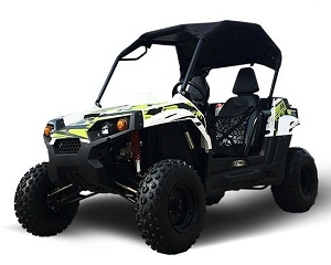 utv 200cc for adults too!