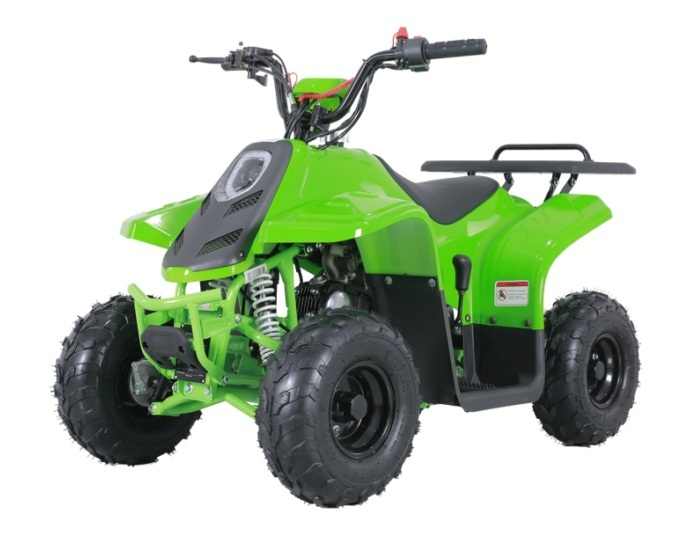 TAOTAO ROCKK 110CC ATV