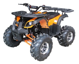 VITACCI RIDER-10 DLX 125CC ATV